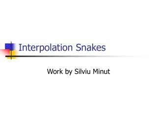Interpolation Snakes