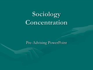 Sociology Concentration