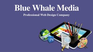 Professional Web Design Company - Blue Whale Media