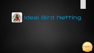 Ideal Bird Netting is best bird control service provider in Pune