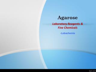 Laboratory Reagents & Fine Chemicals-Agarose
