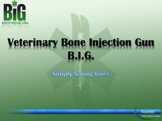 Veterinary Bone Injection Gun    B.I.G.
