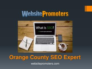 Orange County SEO Expert - Websitepromoters.com