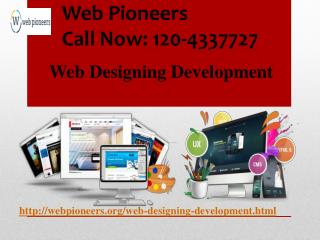 Web Development Designing  Company in Delhi,Noida India