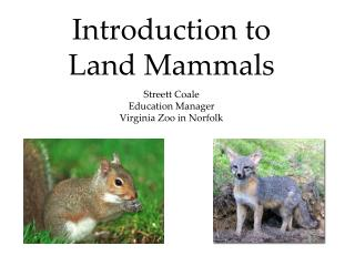 Introduction to  Land Mammals