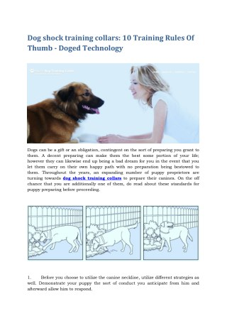 Dog shock training collars - 10 Training Rules Of Thumb