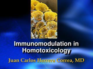 Immunomodulation in Homotoxicology