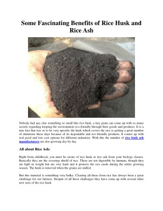 Some Fascinating Benefits of Rice Husk and Rice Ash