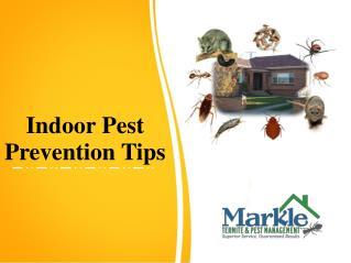 Indoor Pest Prevention Tips