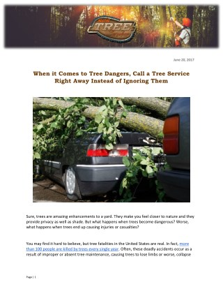When it Comes to Tree Dangers, Call a Tree Service Right Away Instead of Ignoring Them
