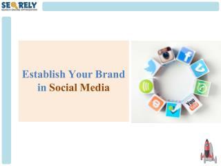 Social Media Optimization(SMO) Packages -  Establish Your Digital Brand - Seorely