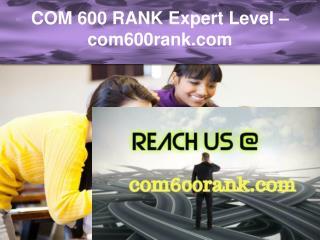 COM 600 RANK Expert Level –com600rank.com