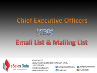 CEOs Mailing Lists|CEO Email Lists