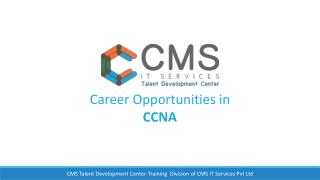 Career Opportunities in CCNA