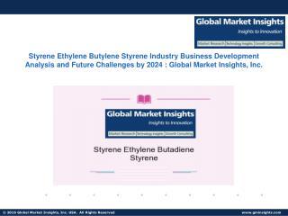 Styrene Ethylene Butylene Styrene Industry Business Development Analysis and Future Challenges by 2024