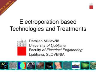 Electroporation based  Technologies and Treatments