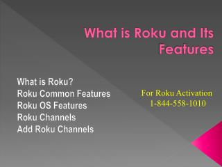 What is roku and its features