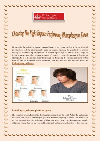 Choosing The Right Experts Performing Rhinoplasty in Korea
