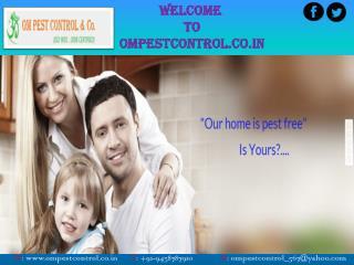Get Leading Pest Control Company in Odisha