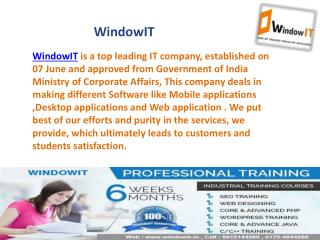 Windowit - Six month industrial training