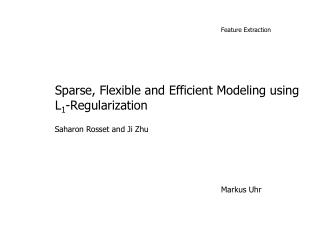 Sparse, Flexible and Efficient Modeling using L1-Regularization