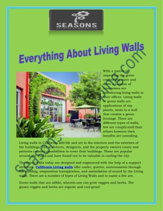 Everything about living walls