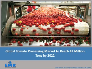Tomato Processing Industry Report and Forecasts From 2017 To 2022