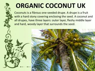 Protection From Heart Disease Desiccated Coconut