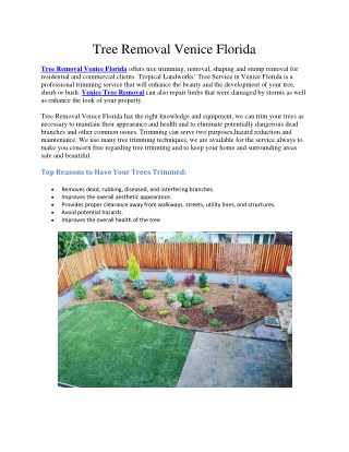 Landscaping Sarasota FL