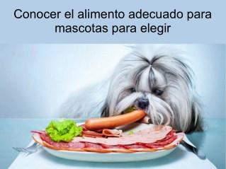 Conocer el alimento adecuado para mascotas para elegir
