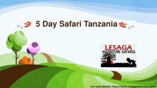 5 Day Safari Tanzania