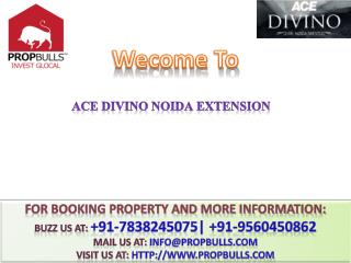 BUY Luxry Apt ACE Divino@#  91-9560450862 #@ ACE Noida Extension