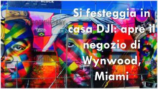 Si festeggia in casa DJI apre il negozio di Wynwood, Miami