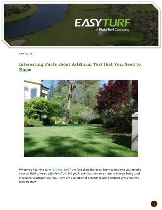 Interesting Facts about Artificial Turf that You Need to Know
