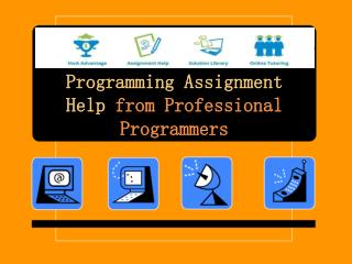 Programming Assignment Help from Professional Programmers