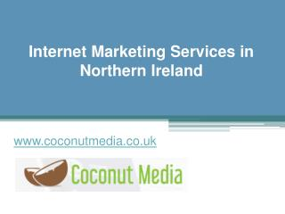 Internet Marketing Services in Northern Ireland - www.coconutmedia.co.uk