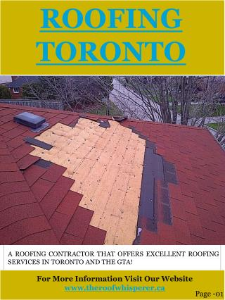 Skylight repair Oakville