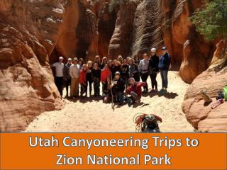 Best Canyoneering Zion at Utah