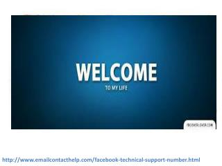 How will Facebook Customer Service 1-850-361-8504  team assist me?