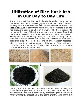 Utilization of Rice Husk Ash in Our Day to Day Life