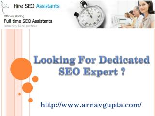 Dedicated SEO Expert