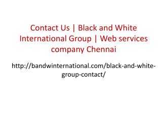 Contact Us | Black and White International Group | Web services company chennai