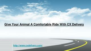 Give Your Animal A Comfortable Ride with CX Delivery