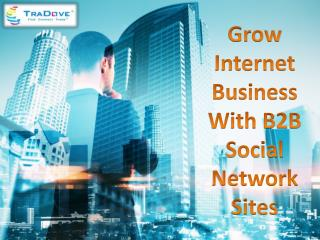 Grow Internet Business With B2B Social Network Sites