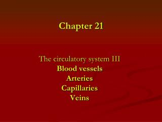 The circulatory system III  Blood vessels Arteries Capillaries Veins