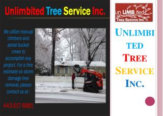 Emergency Tree Service - Unlimbited Tree Service Inc