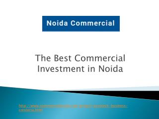 Get Best Commercial Investment in Noida