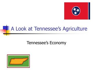 A Look at Tennessee s Agriculture