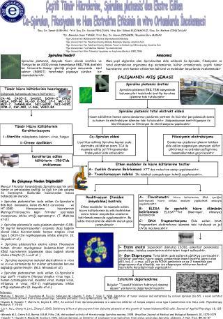 esitli T m r H crelerine, Spirulina platensisden Ekstre Edilen Ca-Spirulan, Fikosiyanin ve Ham Ekstraktin Etkisinin in