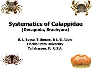 Systematics of Calappidae Decapoda, Brachyura